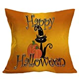 Halloween Square Pillow Cover Cushion Case Pillowcase Zipper Closure by FEITONG (D)