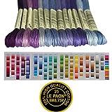 Premium Rainbow Color Embroidery Floss - Cross
