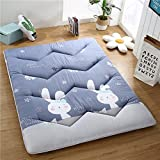 hxxxy Thickened Collapsible Tatami Floor Mat Mattress Topper Twin Queen-king Dorm Traditional Japanese Futon Washable-B 90x200cm(35x79inch)