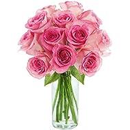 KaBloom Sweet Pink Bouquet of 12 Fresh Cut Pink Roses (Long Stemmed) with Vase
