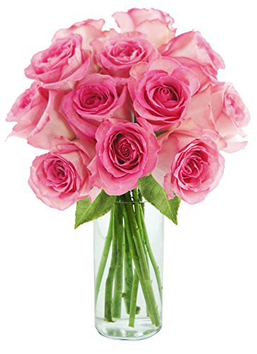 KaBloom Sweet Pink Bouquet of 12 Fresh Cut Pink Roses (Long Stemmed) with Vase