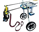 New! Two Wheels Adjustable Dog Wheelchair, cart, 7 Sizes for hind Legs Rehabilitation, 3D Soft Harness,Light Weight, Easy Assemble, Belly Band Specially for Spondylitis (7. New-XL)