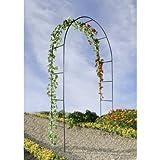 Arche de jardin pour plantes grimpantes OSE - Vert