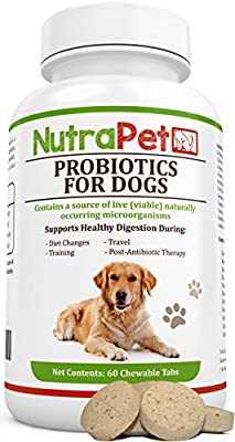 Probiotics for Dogs Chewable, Best for Smelly Gas and Diarrhea Relief Plus Added Prebiotic and Vitamins Only by NutraPet, Controls Stomach Upset, Itching, Hot Spots, 60 Tabs from NutraPet