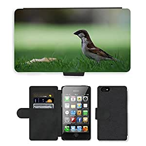 Super Stella Cell Phone Card Slot PU Leather Wallet Case // M00106141 Sparrow Bird Ground Park Common // Apple iPhone 4 4S 4G
