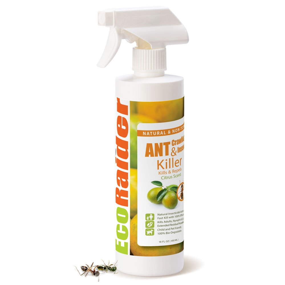 EcoRaider Ant Killer & Crawling Insect Killer (Citrus Scent) 16 OZ, Natural & Non-Toxic