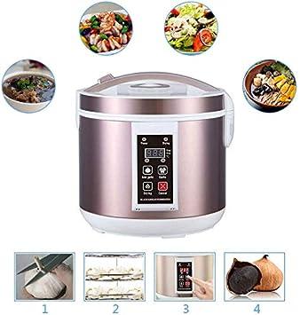 TOPQSC - Fermentador de ajos negro de 5 l y 220 V para hacer ajos y hacer ajos inteligentes, caja de ajos negra para hacer en casa