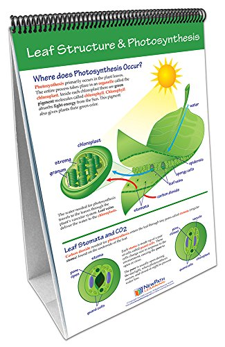 NewPath Learning 34-6726 Photosynthesis and Respiration Flip Chart Set