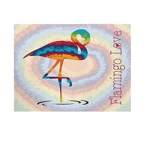 Fondo de fotografía de Flamenco, Flamenco, Colores Arco Iris ...
