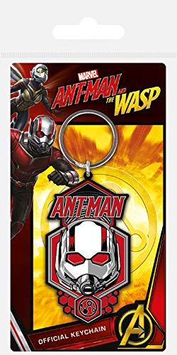 Marvel Ant-Man & The Wasp - Rubber Keychain Ant-Man: Amazon ...