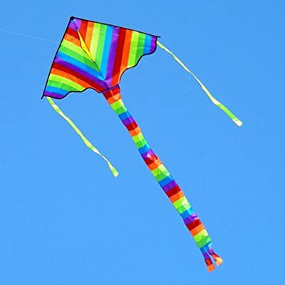 YunZyun Rainbow Kite Color Rainbow Kite with Long Tail Easy Flyer Easy to Launch in Stiff Wind Or Soft Breeze for Children and Adults Flying Wind Toy Outdoor (Multicolor): Home & Kitchen