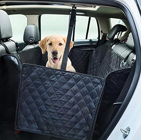 Amazon Henweit Car Booster Seat Carrier For Dog Folding Pet. Henweit Car Booster Seat Carrier For Dog Folding Pet Cat Travel Safety Belt Harness. Seat. Seat Belt Harness Zipper At Scoala.co