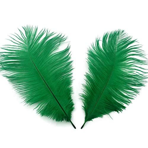Shekyeon Dark Green 10-12inch 25-30cm Ostrich Feather Home Decoration DIY Craft Pack of 10