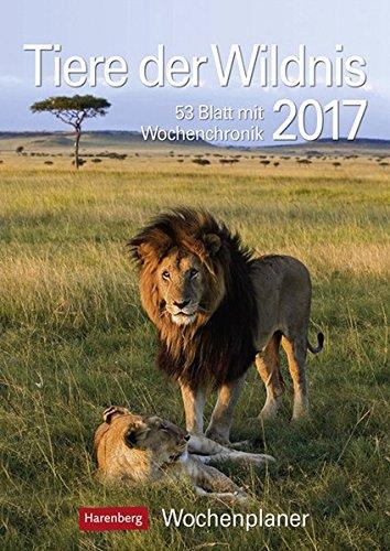Tiere der Wildnis - Kalender 2017: Wochenplaner, 53 Blatt mit Wochenchronik