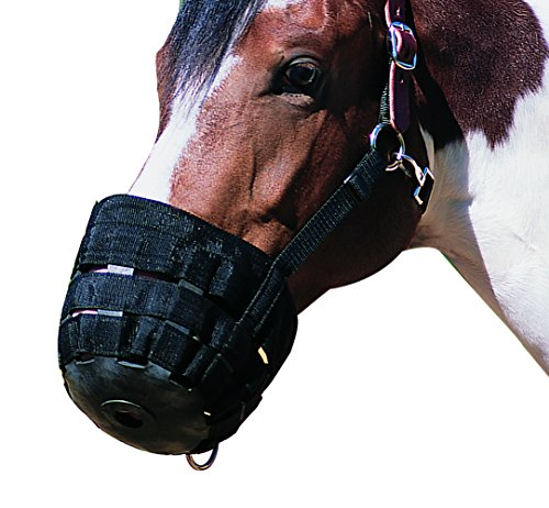 Grazing Pony - NEFTF Horse Grazing Muzzle for Horses Easy Breathe Webbing Adjustable (Pony)
