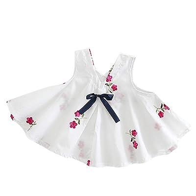 Luxsea Baby Cotton Princess Main Embroidered Dress