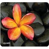 Allsop Naturesmart Mouse Pad, Floral (30185)