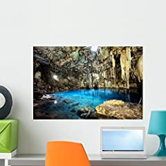 Transform your room with freshly printed Wallmonkeys vinyl murals - Wallmonkeys adhesive posters can easily bring new life to any wall in your bedroom, living room, or office. We have the largest selection of self adhesive wall clings online ...