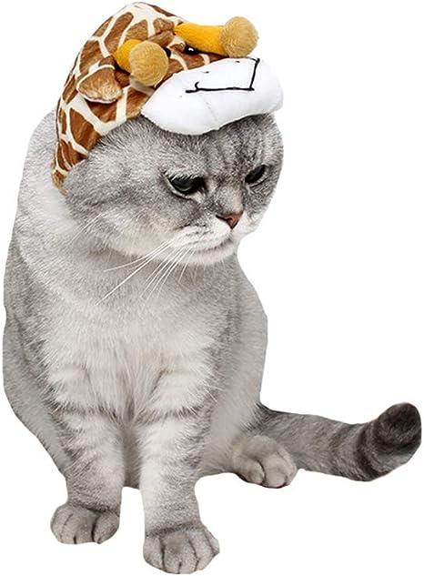 FLAdorepet - Disfraz de Elefante para Halloween para Gato, Perro ...