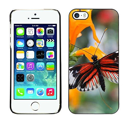 Premio Sottile Slim Cassa Custodia Case Cover Shell // F00013465 neige en montagne // Apple iPhone 5 5S 5G