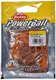 PowerBait Power Nymph