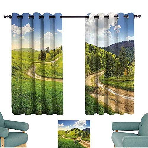 SONGDAYONE Landscape Soundproof Curtain Hillside Meadows Cloudy Sky Fence Near The Road with Fir Trees on Both Sides Bring Beauty Green Blue (2 Panels,W63 xL72)