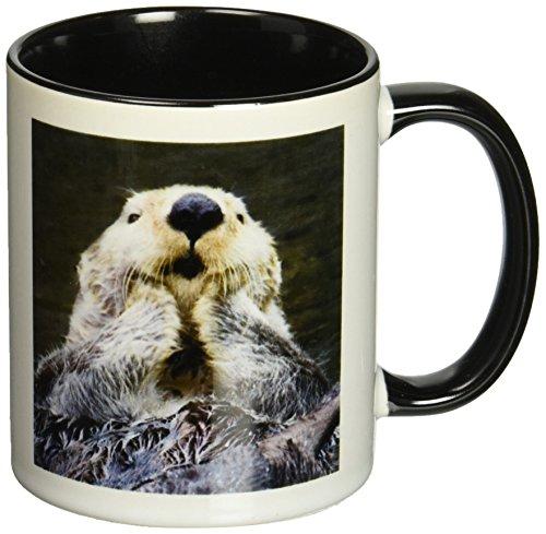 3dRose mug 45621 4 Close Up Warmer Enhydra