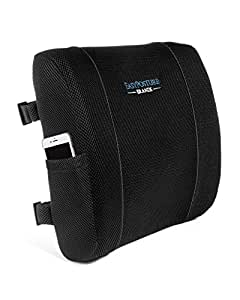 Easy Posture Lumbar Support Back Cushion Memory Foam with Black or Gray (Bonus) Mesh Cover Best Suited for Office Chair, Computer, Car Seat for Low Back Pain