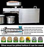 Stainless Steel Automatic Oil Press Machine for Nuts Seeds Oil Presser Pressing Machine