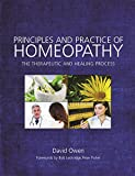 Principles and Practice of Homeopathy : The Therapeutic and Healing Process, Owen, David, 1848192657