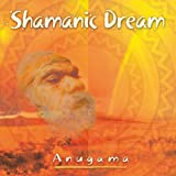 : Shamanic Dream