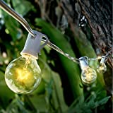 Fantado 10 Socket Outdoor Patio String Light Set, G40 Clear Globe Bulbs, 21 FT White Cord w/ E12 C7 Base by PaperLanternStore