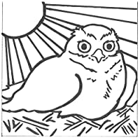 PaintaDoodle 12 x 12 Burrowing Owl Painting Kit