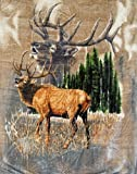 K2 Signature Blanket Elk Calls Queen Mink Korean Style