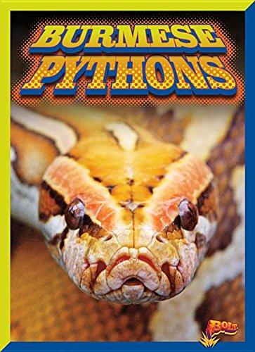 Burmese Pythons (Invasive Species Takeover) pdf