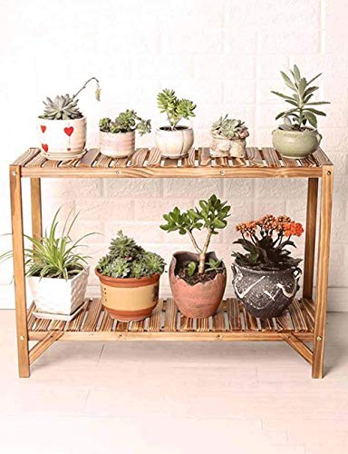 TyT Flower Rack Indoor, Double-layered 2-storey Solid Wooden Balcony, Simple Living Room, Floor Flower Shelf, Carbonized Color, Bonsai, Potted Plant Display Stand, Floor-standing, Outdoor Courtyard Po ()