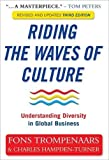 Riding the Waves of Culture: Understanding Diversity in Global Business 3rd edition