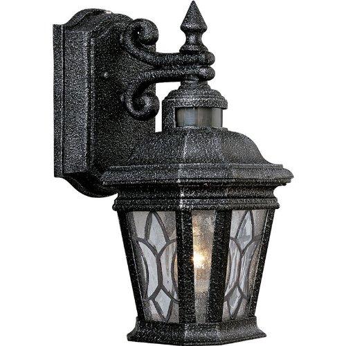 71 Gilded Iron Finish - Progress Lighting P5661-71 1 Light Wall Lantern, Gilded Iron Finish