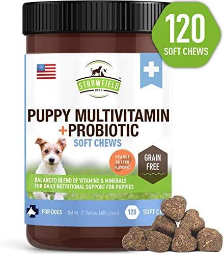 Vitamins Supplements Multivitamin Grain Free Vitamin product image