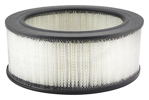 Air Filter, 9-1/16 x 3-5/8 in.