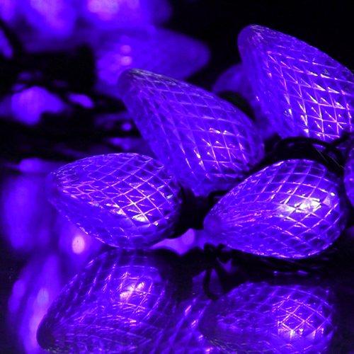 100 C9 Led Light Set