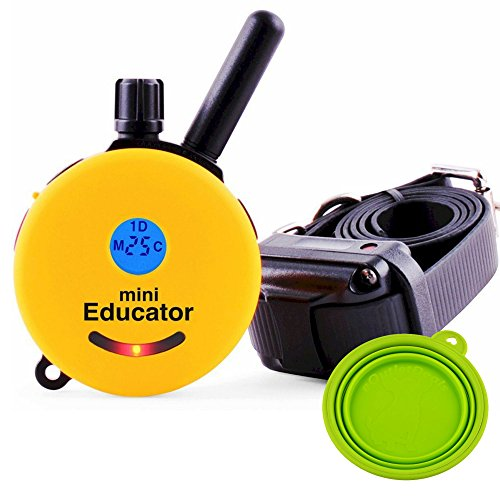 best-dog-training-e-collar-educator-remote-trainer-mini-educator-1-2-mile-remote-trainer-et-300-wate