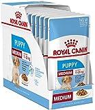 Royal Canin medium valp junior våt hundmat 40 förpackningar om 140 g vardera för valpar och unga hundar med medelstora…