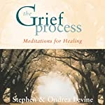 The Grief Process | Stephen Levine,Ondrea Levine
