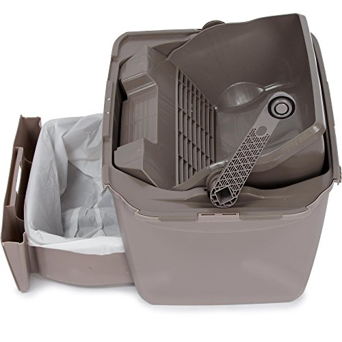 Top 10 scoopfree automatic self cleaning litter box for 2020