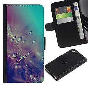 Billetera de Cuero Caso Titular de la tarjeta Carcasa Funda para Apple Iphone 5 / 5S / Drops Rain Pastel Teal Flowers / STRONG