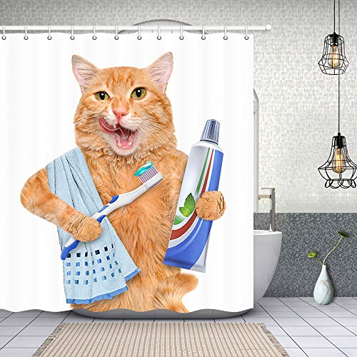 NYMB Funny Animals Shower Curtain Decor, A Cat with Toothpaste on Toothbrush Shower Curtains 69X70 inches Polyester Fabric Bathroom Fantastic Decorations Bath Curtains Hooks Included (Multi14) (Tapestry Shower Curtain)