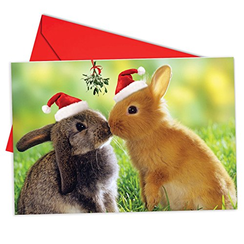 12 'Christmas Animal Smackers Bunny' Adorable Boxed Christmas Greeting Cards 4.63 x 6.75 inch, Merry Xmas Note Cards for Holidays, Gifts, Bunny Humor, Notecard Stationery (w/ Envelopes) B6594EXSG  ()