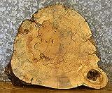 Diy Rustic End Tables Tree Log Slice Spalted Maple Live Edge End/Side Table Top Wood Slab T: 2 3/8''D: 22 1/2'' - 7383
