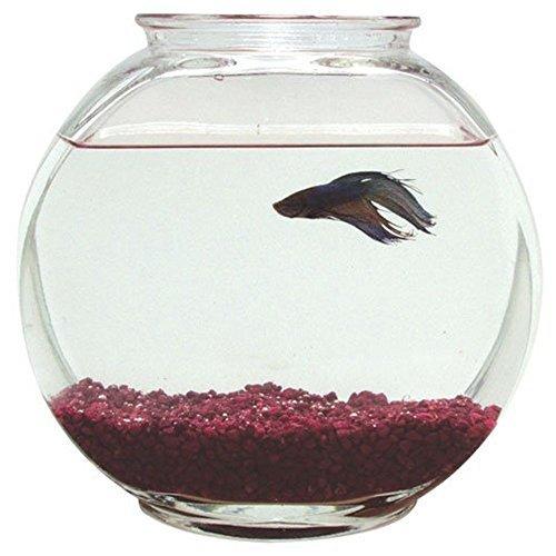 Plastic Drum Fish Bowl - 1 Gal